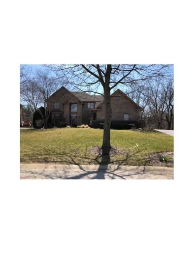 22785 N South Woodcrest Lane, Kildeer, IL 60047 - MLS#: 09850634