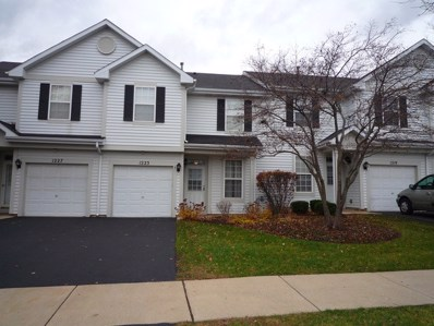 1223 Denver Court UNIT 1223, Naperville, IL 60540 - MLS#: 09851288