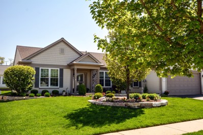 14092 Viola Place, Huntley, IL 60142 - MLS#: 09852431