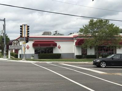 10 E Maple Avenue, Mundelein, IL 60060 - MLS#: 09852610