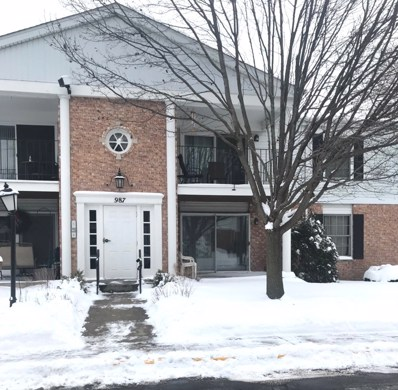 987 GOLF COURSE Road UNIT 6, Crystal Lake, IL 60014 - #: 09854283