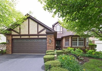 13490 Redberry Circle, Plainfield, IL 60544 - MLS#: 09855012