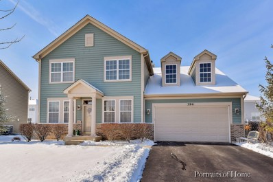 394 Rockland Avenue, Elgin, IL 60124 - #: 09855216