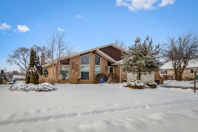 20408 S Grand Prairie Lane, Frankfort, IL 60423 - MLS#: 09855281