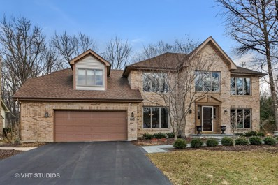 2724 WOLF RIVER Court, Naperville, IL 60565 - MLS#: 09856853