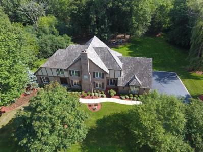 44 Old Lake Road, Hawthorn Woods, IL 60047 - MLS#: 09857119