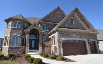 20 Pinnacle Court, Naperville, IL 60565 - MLS#: 09857839