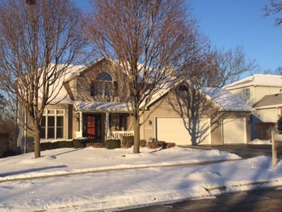 1041 Winslow Avenue, Woodstock, IL 60098 - #: 09858315