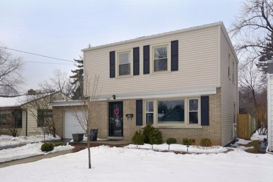 668 S 4th Avenue, Des Plaines, IL 60016 - MLS#: 09859026