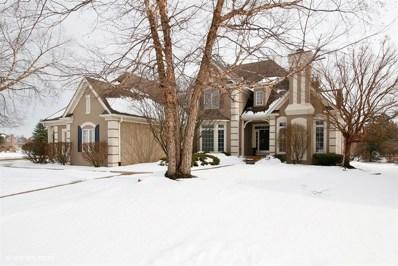 3336 White Eagle Drive, Naperville, IL 60564 - MLS#: 09859440