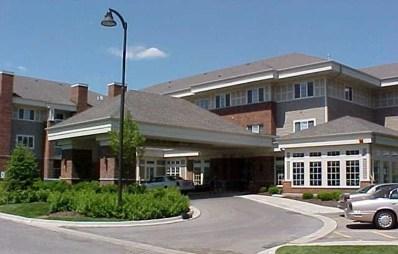 801 N Mclean Boulevard UNIT 338, Elgin, IL 60123 - #: 09859978