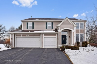 1291 Waterfront Lane, Pingree Grove, IL 60140 - #: 09860847