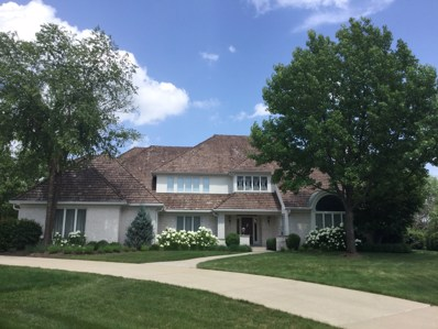 11 Cove Court, Burr Ridge, IL 60527 - #: 09860892