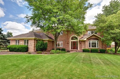 1404 Durness Court, Naperville, IL 60565 - #: 09861544