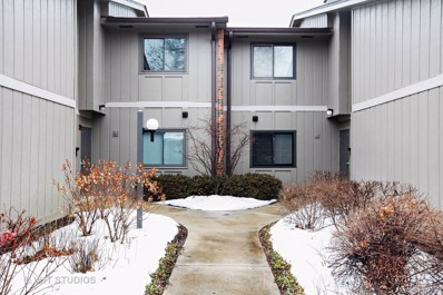 29W410  Emerald Green Drive UNIT C, Warrenville, IL 60555 - #: 09861670