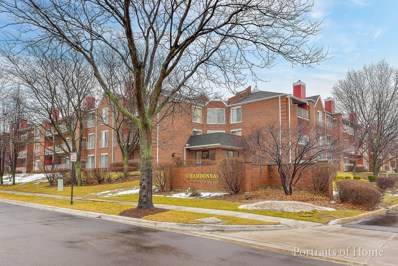 805 leicester Road UNIT 210, Elk Grove Village, IL 60007 - MLS#: 09861721