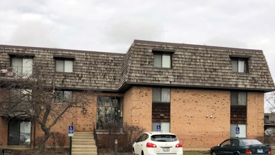 2 Oak Creek Drive UNIT 2207, Buffalo Grove, IL 60089 - MLS#: 09863870