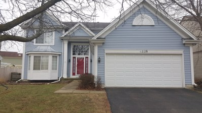 1228 Lone Oak Trail, Aurora, IL 60506 - #: 09865766