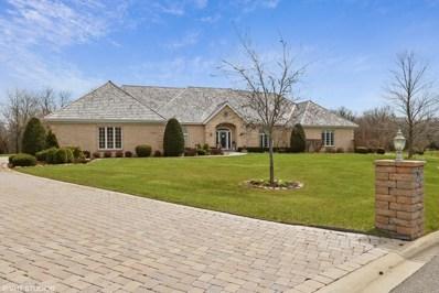 22545 W Cheshire Court, Deer Park, IL 60010 - MLS#: 09865966