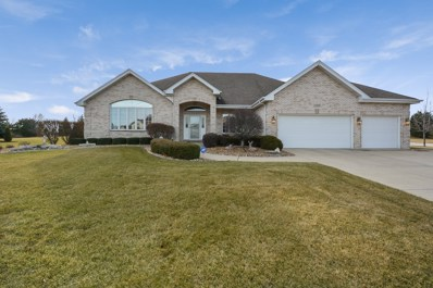 22516 Aster Drive, Frankfort, IL 60423 - MLS#: 09866020