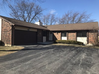 206 Plum Grove Road, Roselle, IL 60172 - #: 09867281