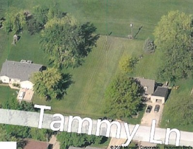 135 Tammy Lane, Lake Holiday, IL 60552 - MLS#: 09869184
