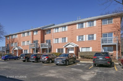 1330 S Lorraine Road UNIT D, Wheaton, IL 60189 - MLS#: 09869496