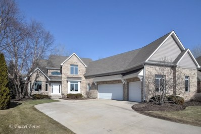 819 Wedgewood Drive, Crystal Lake, IL 60014 - #: 09869629