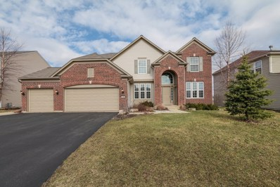 196 Chapin Way, Oswego, IL 60543 - #: 09869716