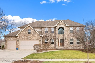 710 Norway Place, Oswego, IL 60543 - MLS#: 09869927