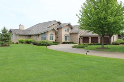 6963 W Gabreski Lane, Monee, IL 60449 - MLS#: 09870110