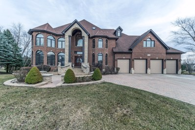3804 Royal Dornach Court, Naperville, IL 60564 - MLS#: 09870433