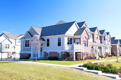 0N097  Forsythe Court, Winfield, IL 60190 - #: 09870740