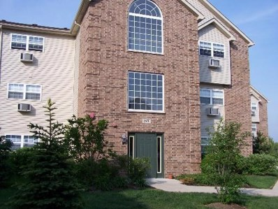 410 Cunat Boulevard UNIT 2C, Richmond, IL 60071 - #: 09870943