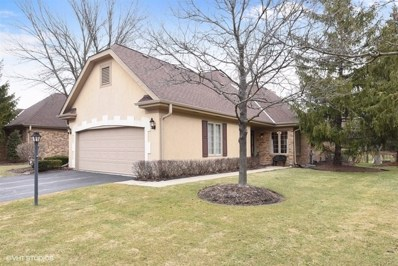 49 Pine Tree Lane, Burr Ridge, IL 60527 - MLS#: 09871238