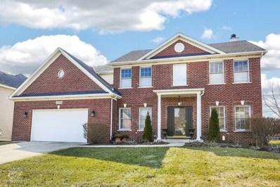 25840 Meadowland Circle, Plainfield, IL 60585 - #: 09871976