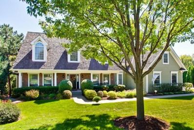 925 Prairie Hill Court, Cary, IL 60013 - MLS#: 09872067