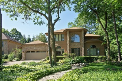 4821 Deepwood Lane, Palatine, IL 60067 - MLS#: 09872914