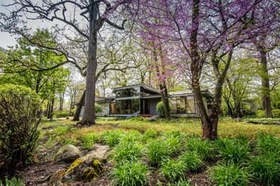 97 Timber Court, Oak Brook, IL 60523 - #: 09873381