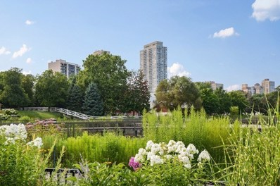 2020 N LINCOLN PARK WEST UNIT 11G, Chicago, IL 60614 - MLS#: 09874115