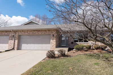 803 Eagle Creek Road, Elwood, IL 60421 - #: 09875192