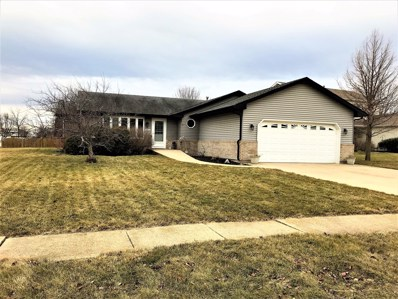 6904 LEMHI Court, Plainfield, IL 60586 - MLS#: 09875267