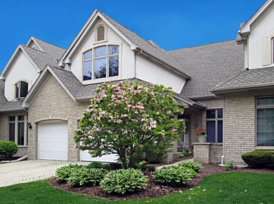 1484 Cress Creek Court, Naperville, IL 60563 - MLS#: 09875352