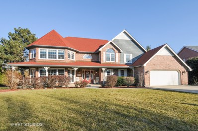 8713 Lake Ridge Drive, Darien, IL 60561 - MLS#: 09875875