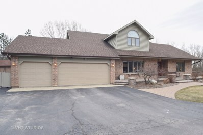 40457 N Fox Run Lane, Antioch, IL 60002 - MLS#: 09876020