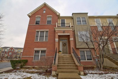 1146 Danforth Court, Vernon Hills, IL 60061 - MLS#: 09876260