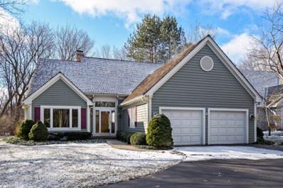 4611 Forest Way Circle, Long Grove, IL 60047 - MLS#: 09877449