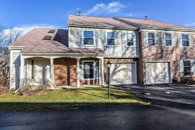 117 Bright Ridge Drive, Schaumburg, IL 60194 - #: 09877936