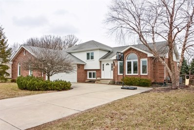 14169 Creekside Drive, Orland Park, IL 60467 - MLS#: 09878036