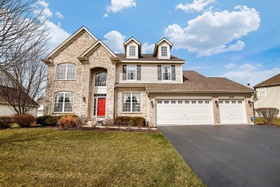 13340 Morning Mist Place, Plainfield, IL 60585 - MLS#: 09878394